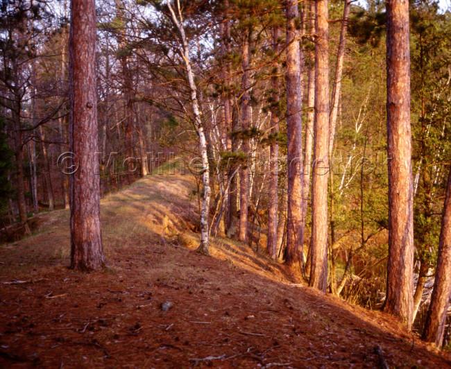 paradise-photography-landscape-fine-art-143