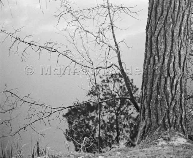 paradise-photography-landscape-fine-art-77