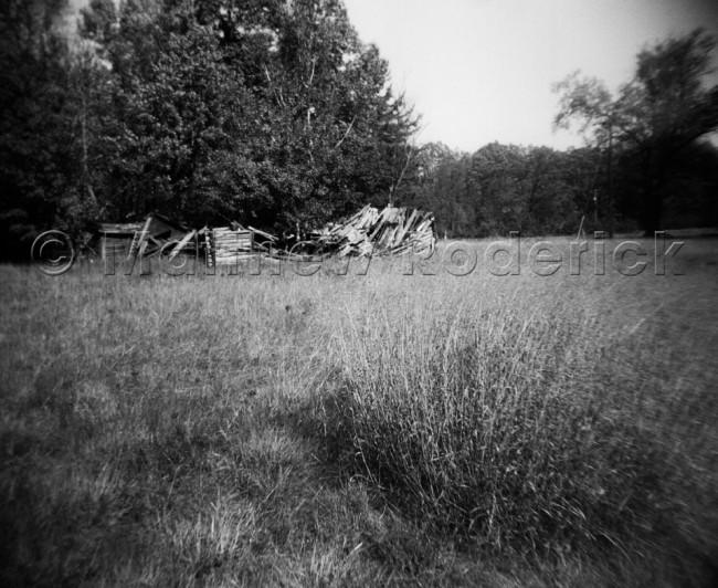 paradise-photography-landscape-fine-art-holga-medium-format-natures-claim