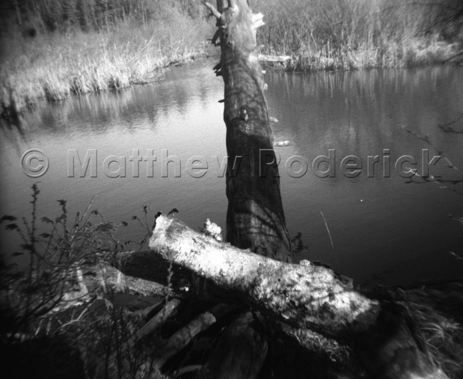 paradise-photography-landscape-fine-art-165