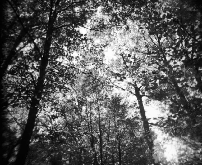 paradise-photography-landscape-fine-art-169
