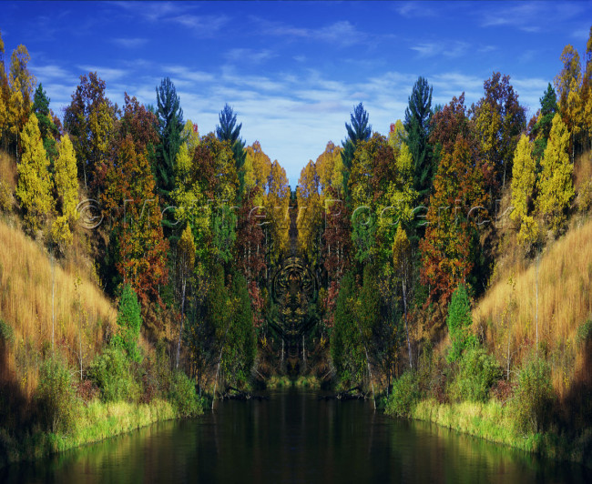 tonal-scale-photography-landscape-fine-art-181