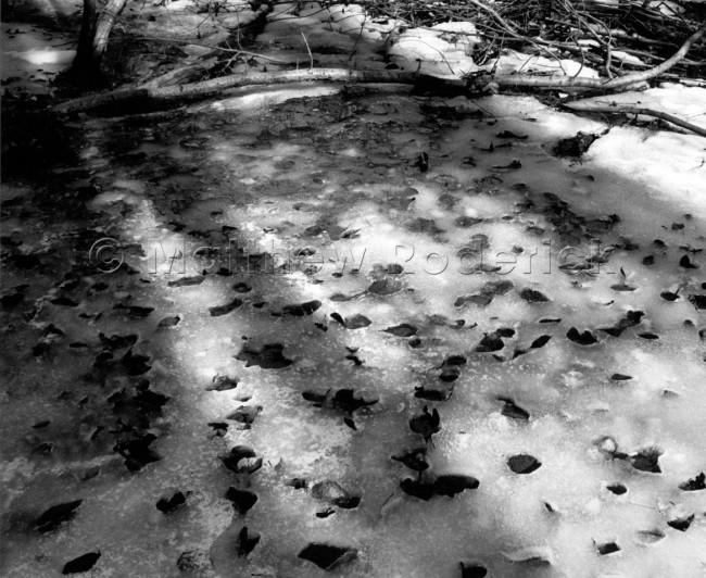 tonal-scale-photography-landscape-fine-art-189