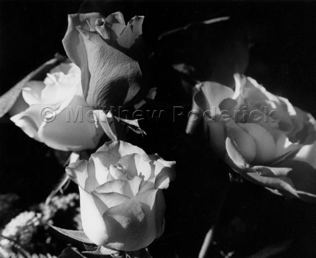 tonal-scale-photography-landscape-fine-art-198